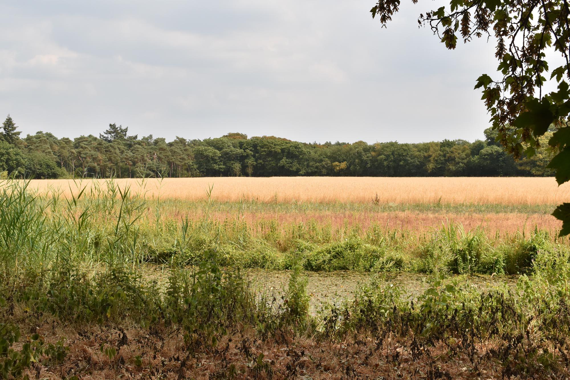 Landgoed Beerschoten